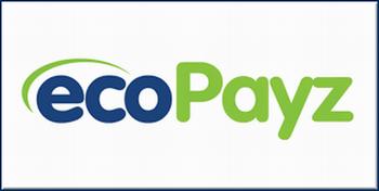 エコペイズ【EcoPayz】の解説